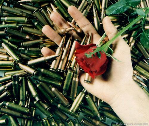 Photograph:  'Some bullets, a hand and a rose'