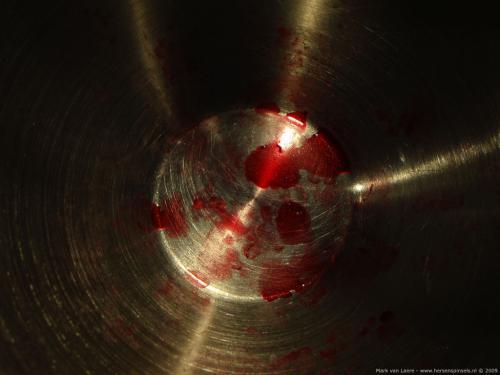 wallpaper: Bloedvlekken, HersenSpinsels