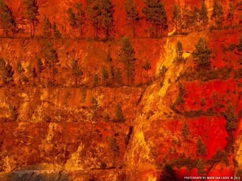 wallpaper: Rio Tinto Mijn, Flora & Fauna