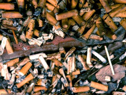 wallpaper: Niet Roken 2, HersenSpinsels