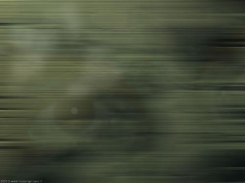 wallpaper: Zelfportret, HersenSpinsels